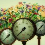 Realism, Pressure Gauges & Flowers, 3D, Cinema 4D, by Lonnie Busch, Franklin, North Carolina