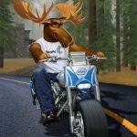 Cartoon Characters, Moose, Motorcycle, Chopper, Intel, Seagate, by Lonnie Busch, Franklin, North Carolina